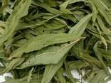 Иван чай (лист сухой) - фото 3