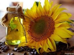 Justyna Swobodaолійний ріпак,соняшникова олія - соєве масл