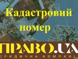 Кадастровий номер земельної ділянки Полтава.