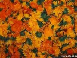 Календула соцветия. Нагідки квіти та пелюстки купуємо