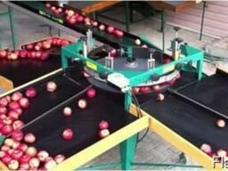 Калибратор для яблок