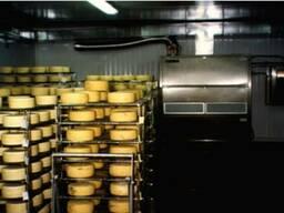 Камера для созревания сыра