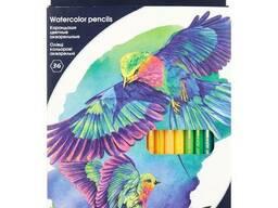 Олівці кольорові акварельні 'Kite' з 36 кольорів