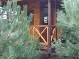 Каркасный дом, деревянный дом, сруб