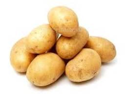 Картофель, морковка, свекла, лук, капуста