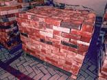 Кирпич красный и белый полуторный отличное качество Ичня - фото 1