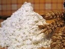 Клейковина пшеничная (глютен пшеничный)