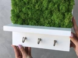 Ключница настенная MiNature Moss стабилизированый мох