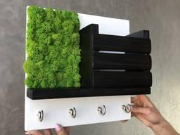 Ключница настенная стабилизированый мох эко-декор MiNature Moss