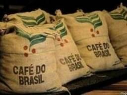 Кофе Арабика Бразилия Сантос, натуральный, зеленый (необжар