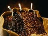 Кофе Свежеобжаренный в зёрнах - фото 1