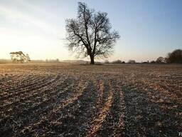 Колхоз, сельхозпредприятие, агрофирму