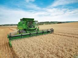 Комбайн аренда услуг в уборке урожая зерновых и масличных. - фото 2