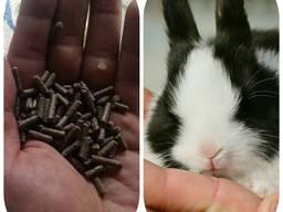 """Комбикорм для кроликов Откорм """"ComFerma"""""""