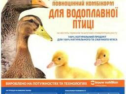 Комбікорм для гусеняк каченят ТМ Калинка віком від 0-21 днів