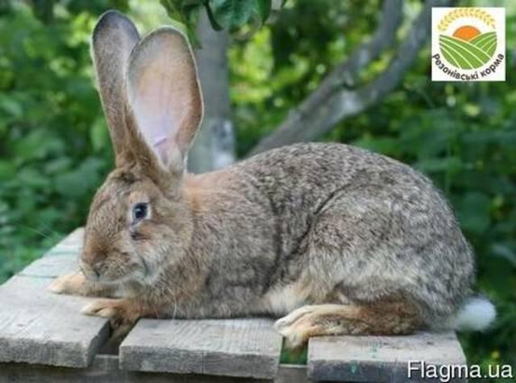 Комбикорм для кроликов от Производителя!