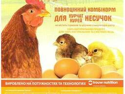 Комбікорм для курей курчат несучок ТМ Калинка