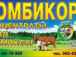 Комбикорм для несушек от Агрозоосвит