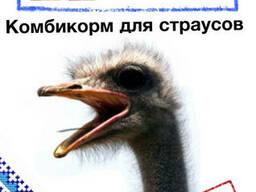 Комбикорм для страусов.