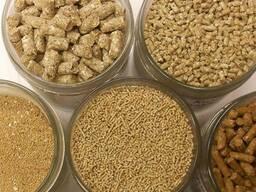 Универсальная кормосмесь для всех видов птицы и животных