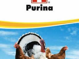 Комбикорма Пурина для птицы, свиней, ВРХ