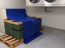 Комплекс зберігання і охолодження ягід