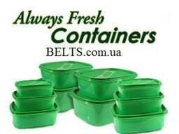 Контейнеры для продуктов Always fresh (Олвейс Фреш) 10 штук