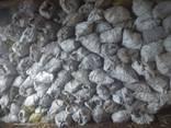 Кора сосновая 50л в белом сахарном мешке - фото 7