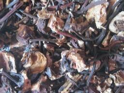 Корень лабазника (гадючник, таволга) вязолистого