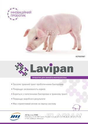 Кормовой пробиотик для животных и птиц Лавіпан