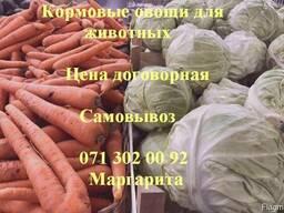 Кормовые овощи; Корма для животных; Овощи для животных