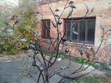 Кованое дерево с почтовым ящиком. - фото 1