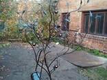 Кованое дерево с почтовым ящиком. - фото 5