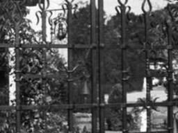 Кованые заборы ворота перила