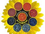 Краска для семян АгроДекор - фото 1
