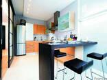Кухня Ремонт Кухонную Мебель/Окна/Дверь Установить - фото 2