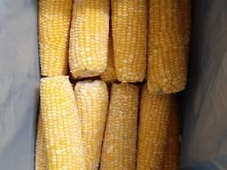 Кукуруза (в початках) быстрозамороженная