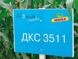 Кукуруза ДКС 3511