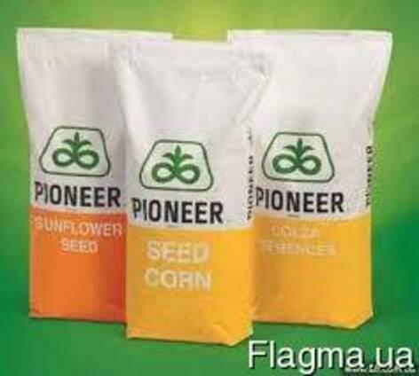 P9074 Кукуруза Pioner Пионер кукурудза фао 330