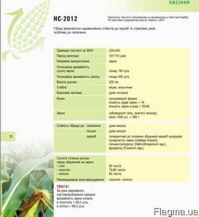 Кукуруза НС 2012 купить,Посевной материал кукурузы цена