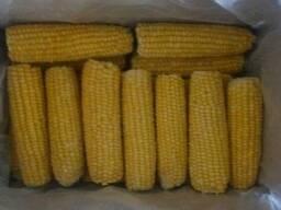 Кукуруза в початках суперсладкая бланшированная