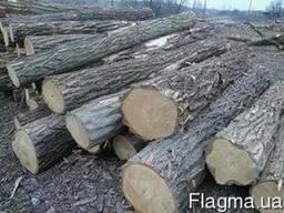 Куплю дрова любой породы