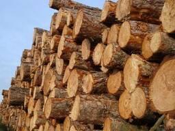 Купить дрова в Симферополе