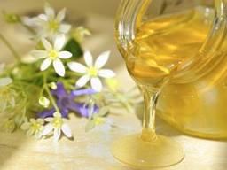 Куплю цветочный мед оптом