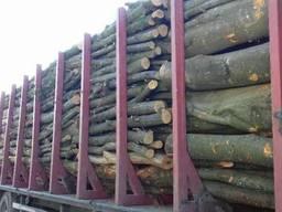 Куплю дрова Букові кругляк