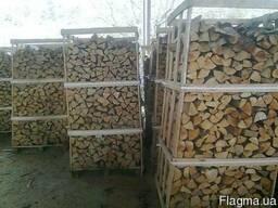 Куплю дрова камерная сушка на экспорт - фото 1