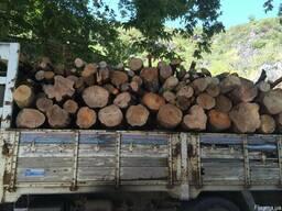 Куплю дрова различных пород до 500 кубов