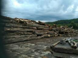 Куплю дрова ТЛ кругляк