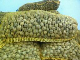 Куплю кругляк грецкого ореха 2018 урожай