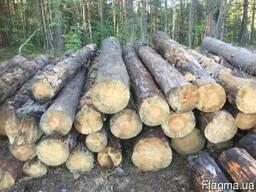 Куплю лес кругляк сухостой